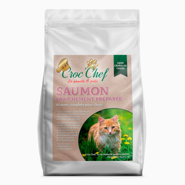 Croquette chat saumon sans céréales